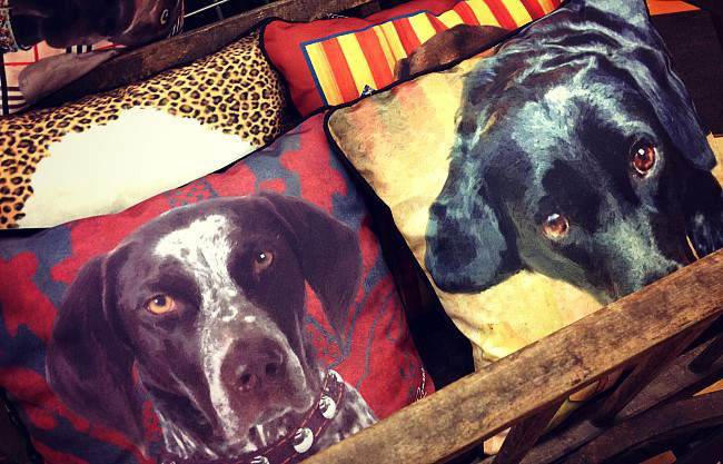 Pop Art Dog Pillow